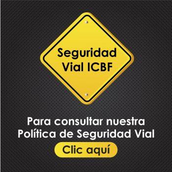 Política de Seguridad Vial del ICBF