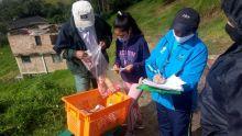 ICBF llevó canastas alimentarias a 66.845 familias de niños atendidos en Nariño