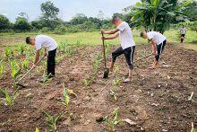 ICBF promueve proyectos productivos de adolescentes y jóvenes de  Responsabilidad Penal en Villavicencio