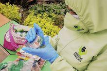ICBF ha distribuido en julio más de 20.000 canastas alimentarias en Boyacá