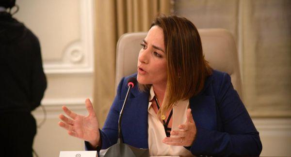 Directora del ICBF anunció decisión del Gobierno de otorgar funciones judiciales a procuradores para  trámites de adopción durante el aislamiento obligatorio